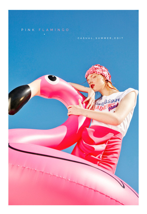 Sfera pink flamingo Home – Pedro Cedeño